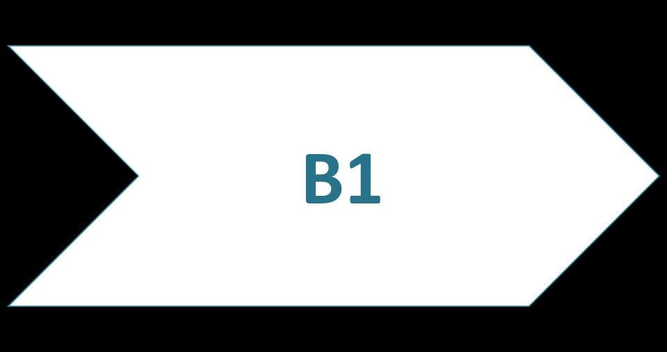 Cours de langue B1