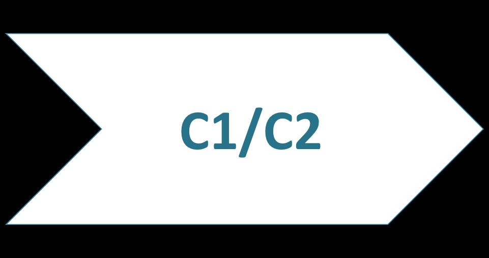 Cours de langue C1/C2