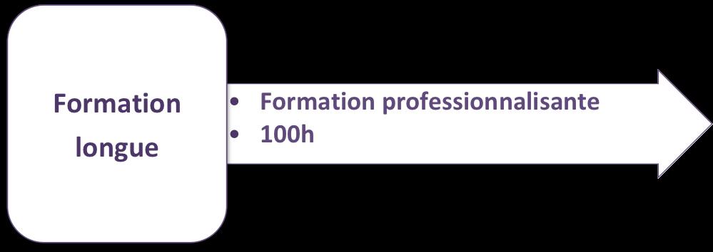 Des formations professionnalisantes longues